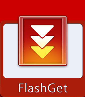 FlashGet 2020 Potable